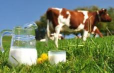 Sprijin financiar excepțional pentru fermierii care dețin între 3 și 9 vaci de lapte