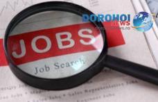 Peste 460 locuri de muncă disponibile în această săptamână în Botoşani. Vezi lista posturilor vacante!