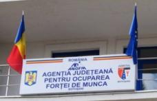 În atenția angajatorilor! AJOFM Botoșani acordă servicii de medierea muncii!