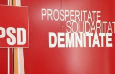 """Doina Federovici: """"PSD amână alegerile interne în toate organizațiile județene din țară pentru a pregăti scrutinele electorale parțiale din 11 iunie"""