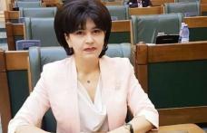 """Doina Federovici: """"Avem nevoie de consens politic pentru dezvoltarea județului Botoșani"""""""