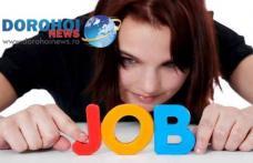 Peste 370 locuri de muncă disponibile în această săptamână în județul Botoșani. Vezi lista posturilor vacante!