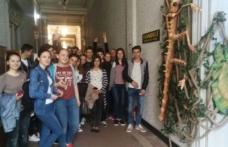 """""""Noaptea Muzeelor"""" la Muzeul de Științele Naturii Dorohoi"""