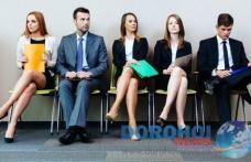 Primaria Municipiului Dorohoi scoate la concurs două posturi de consilieri. Vezi ce locuri de muncă vacante sunt în județ!