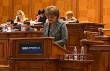 Camera Deputaților a adoptat inițiativa deputatului PSD Mihaela Huncă pentru înființarea centrelor județene de excelență ca unități conexe Ministerulu
