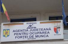 Absolvenții de liceu promoția 2017 așteptați la AJOFM Botoșani pentru înscriere în evidenţă