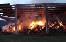 4 tone de furaje, mistuite de flăcări