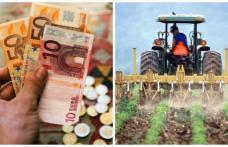 Suprafeţe agricole pentru care nu se acordă subvenţii