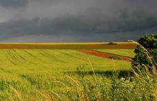 România ocupă primul loc la teren agricol