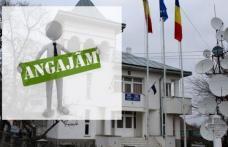 Primăria Ibănești organizează concurs pentru ocuparea funcției vacante de referent. Vezi detalii!