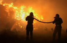 12 tone de furaje distruse în două incendii