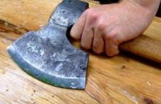 Austria caută tăietori de lemne. Salariul, 1.200 euro pe lună
