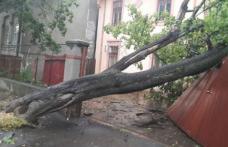 Fenomenele meteo extreme se vor intensifica. Populaţia trebuie să ţină cont de alerte!