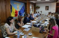 Promovarea oportunităţilor de afaceri bazate pe TIC în judeţul Botoşani