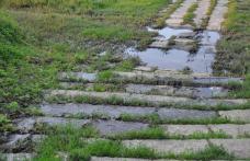 Primim la redacţie - Canalizare înfundată şi dejecţii revărsate pe Valea Ţiganului - FOTO