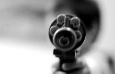 Modificări aduse Legii nr.295/2004 privind regimul armelor şi muniţiilor