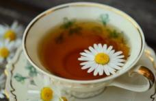 Cele mai bune ceaiuri de băut toamna