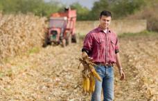 Deții terenuri agricole sau ferme de animale? Află ce subvenții se acordă în acest an și când vor începe plățile
