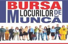 380 locuri de muncă oferită la BURSA LOCURILOR DE MUNCĂ PENTRU ABSOLVENȚI