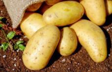 Cum se gătesc corect cartofii ca să nu îngrașe