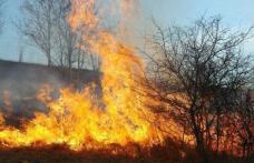 Comunicat SVSU Dorohoi - Arderea frunzelor și a vegetației uscate un pericol pentru cei din jur