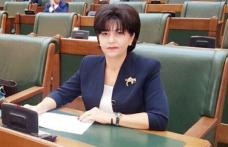 """Senatorul PSD Doina Federovici: """"Proiectul de modernizare a drumului Botoșani-Târgu Frumos a intrat în etapa finală de avizare"""""""