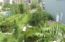 Școala nr.8 Dorohoi vrea să își extindă spațiul verde