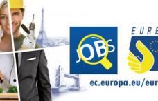 300 locuri de muncă în domeniul agricol (culegători zmeură, ambalare, etichetare) în Portugalia prin intermediul Reţelei EURES
