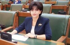 """Doina Federovici: """"Reducerea impozitului pe venit de la 16% la 10% va fi cumulată de măsuri compensatorii pentru autoritățile locale"""""""