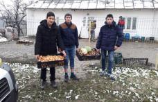 """Săptămâna legumelor şi fructelor donate la Şcoala Gimnazială """"Alecu Ivan Ghilia"""" - FOTO"""