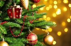 Când se împodobeşte bradul de Crăciun. Multă lume nu ştie, însă tradiţia spune că...