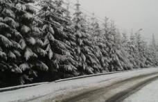 Cod GALBEN de ninsori abundente: vânt puternic, strat de zăpadă consistent
