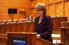 Mihaela Huncă: Propun introducerea cel puţin o dată pe an a unei perioade de învăţământ interdisciplinar
