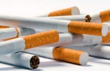 Țigarete introduse ilegal în România confiscate