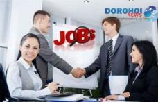 Ofertă generoasă de locuri de muncă în instituţiile bugetare!
