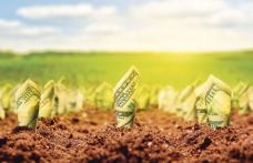 """Viorica Dăncilă """"Fermierii își vor primi în avans subvențiile pentru agricultură"""""""
