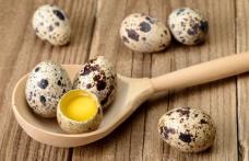 Cum se ține o cură cu ouă de prepeliță și în ce afecțiuni este indicată