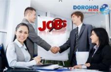 LISTA locurilor de muncă: Ofertă generoasă în instituţiile bugetare!