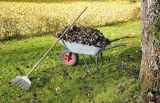 """Primăria Municipiului Dorohoi declanșează un amplu program de salubrizare sub egida """"Luna curățeniei"""""""