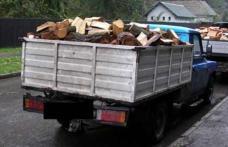 Transport ilegal de lemn, oprit pe DJ 291 D. Poliţiştii din Pomârla au confiscat 4,8 mc material lemnos