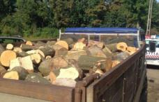 Material lemnos fără documente legale confiscat de poliţişti pe raza comunei Mihăileni