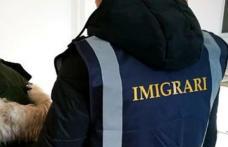 Femeie din Republica Moldova, depistată cu ședere ilegală în județul Botoșani