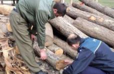Lemn confiscat și amenzi de mii de lei