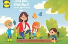 Lidl îi învață pe cei mici cum să aibă mica lor grădină la ei acasă