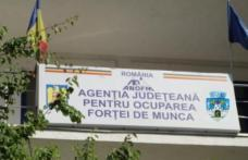 Întreprinderile sociale pot obține atestatul de la AJOFM Botoșani care le va oferi posibilitatea de a accesa fonduri europene