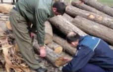 Comerț ilegal constatat la sediul unei unităţi din comuna Albeşti. Poliţiştii au confiscat 49 mc material lemnos