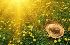 Se anunță trei luni fierbinți și fără ploi - prognoza meteo pentru toată vara