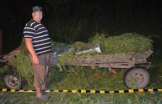 Contrabandist prins cu ţigările în căruţă - FOTO