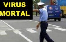 Panică în România! Drumuri închise pe o rază de 10 km. Un virus teribil a mobilizat autorităţile