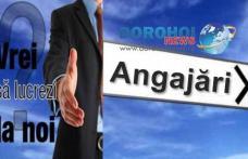 Primăria comunei Ibănești scoate la concurs un post vacant. Când va avea loc concursul